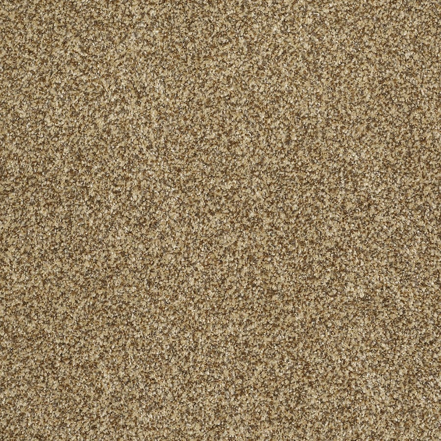 Shaw Private Oasis II Tigereye Rectangular Indoor Tufted Area Rug (Common: 8 x 11; Actual: 96-in W x 132-in L)