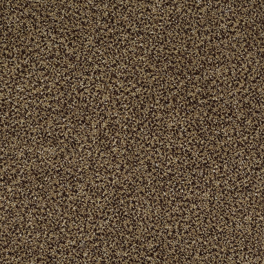 Shaw Private Oasis II Supreme Rectangular Indoor Tufted Area Rug (Common: 8 x 11; Actual: 96-in W x 132-in L)