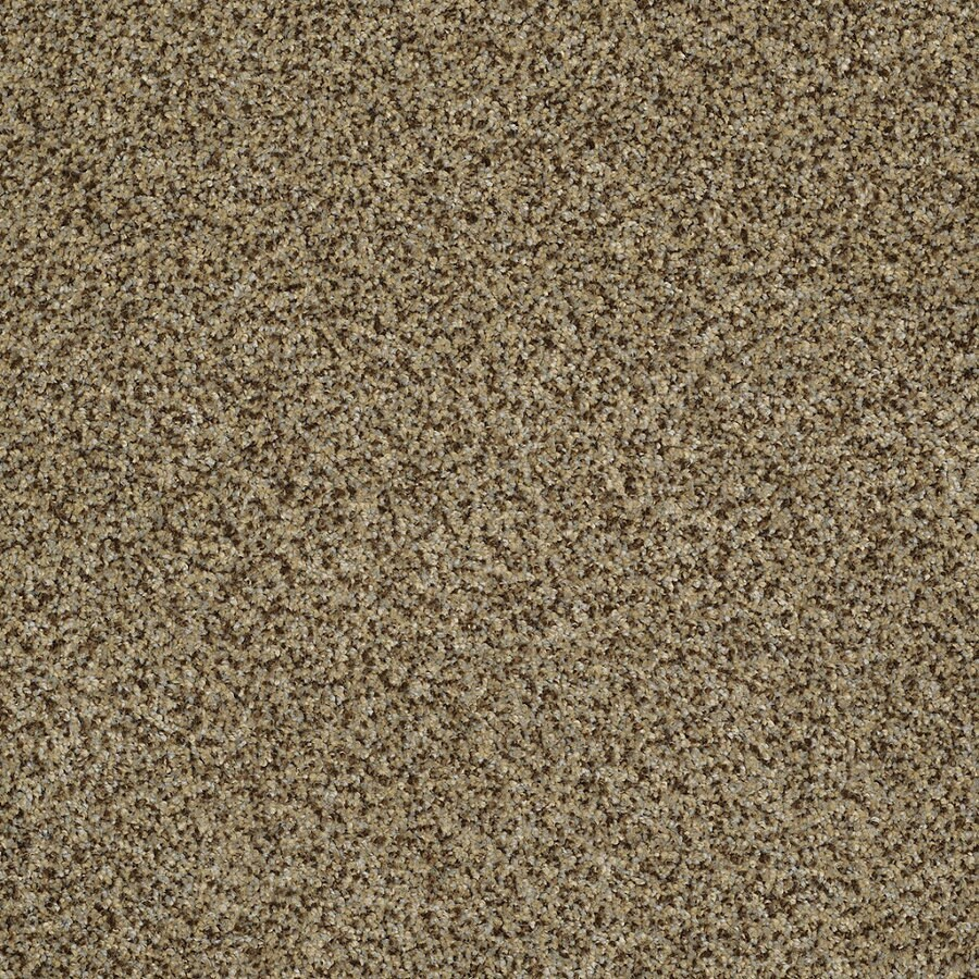 Shaw Private Oasis IV Bahia Rectangular Indoor Tufted Area Rug (Common: 6 x 9; Actual: 72-in W x 108-in L)