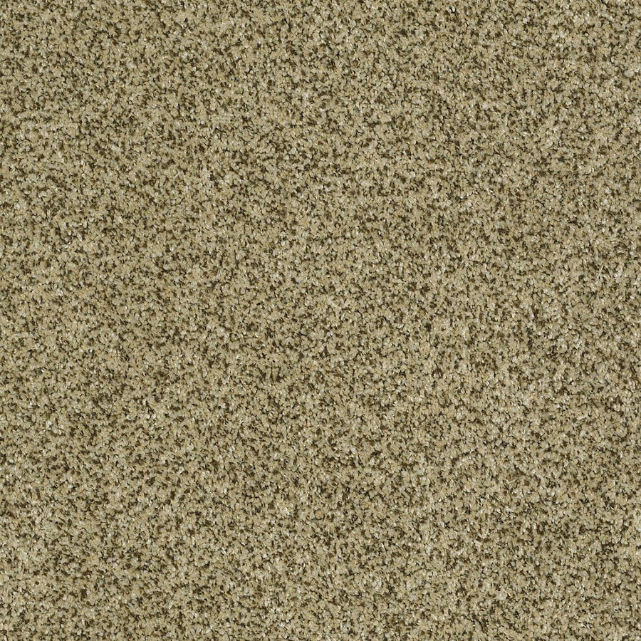 Shaw Private Oasis IV Papillion Rectangular Indoor Tufted Area Rug (Common: 8 x 11; Actual: 96-in W x 132-in L)