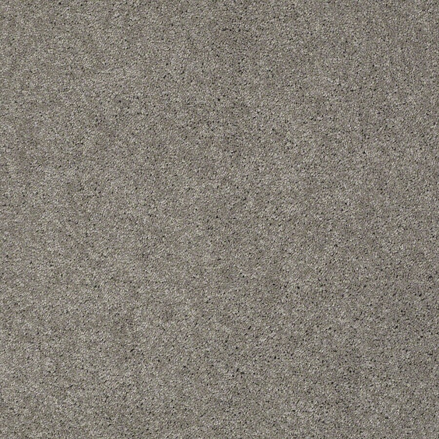Shaw Supreme Delight 1 Heavy Metal Rectangular Indoor Tufted Area Rug (Common: 6 x 9; Actual: 72-in W x 108-in L)