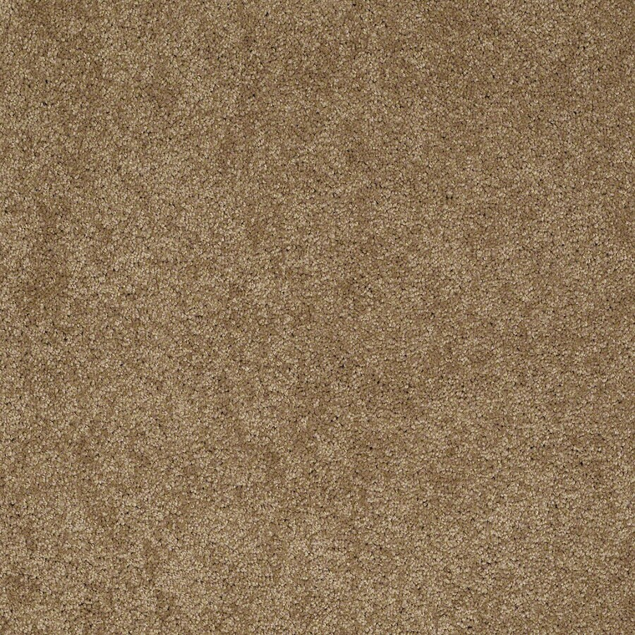 Shaw Supreme Delight 2 Cedar Chest Rectangular Indoor Tufted Area Rug (Common: 6 x 9; Actual: 72-in W x 108-in L)