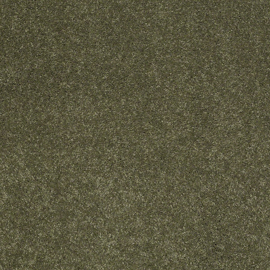 Shaw Supreme Delight 2 New Willow Rectangular Indoor Tufted Area Rug (Common: 6 x 9; Actual: 72-in W x 108-in L)