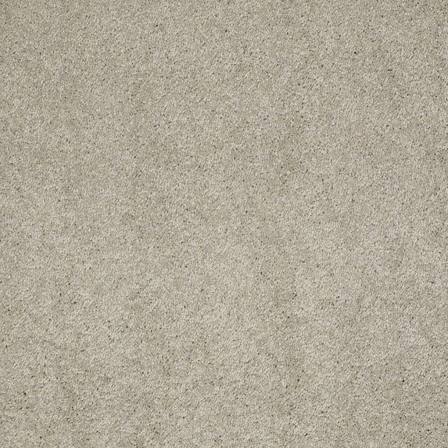 Shaw Supreme Delight 2 Limestone Rectangular Indoor Tufted Area Rug (Common: 6 x 9; Actual: 72-in W x 108-in L)