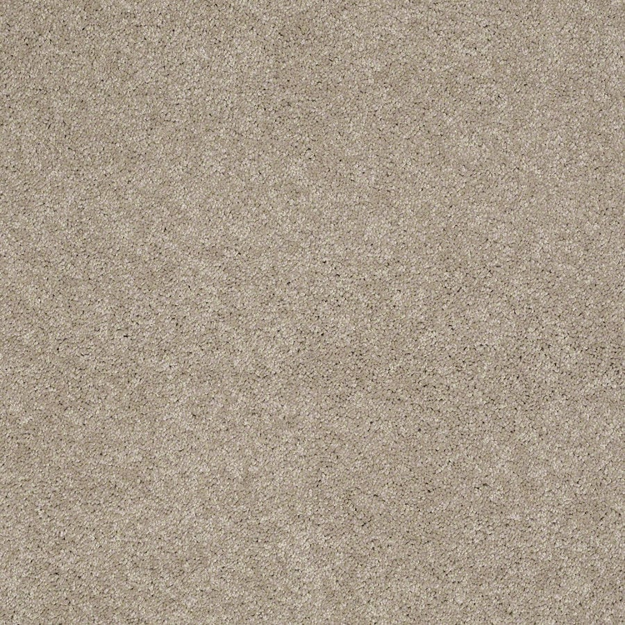 Shaw Supreme Delight 2 Park Avenue Rectangular Indoor Tufted Area Rug (Common: 6 x 9; Actual: 72-in W x 108-in L)