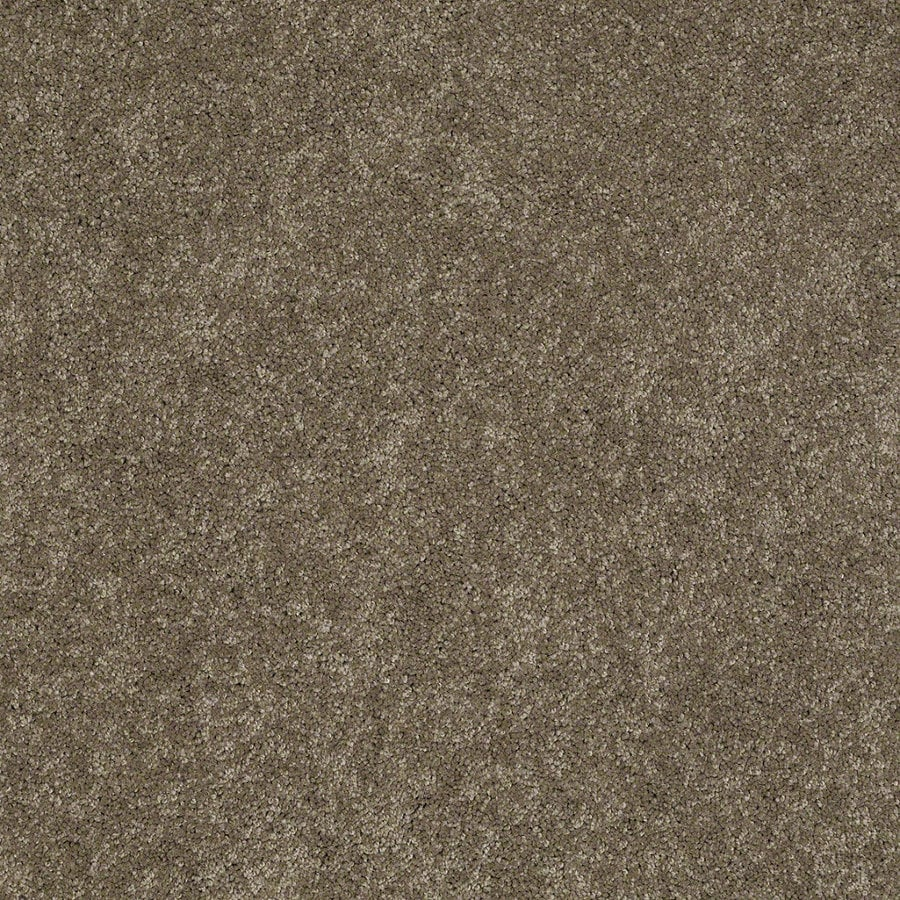 Shaw Supreme Delight 2 Boardwalk Rectangular Indoor Tufted Area Rug (Common: 6 x 9; Actual: 72-in W x 108-in L)