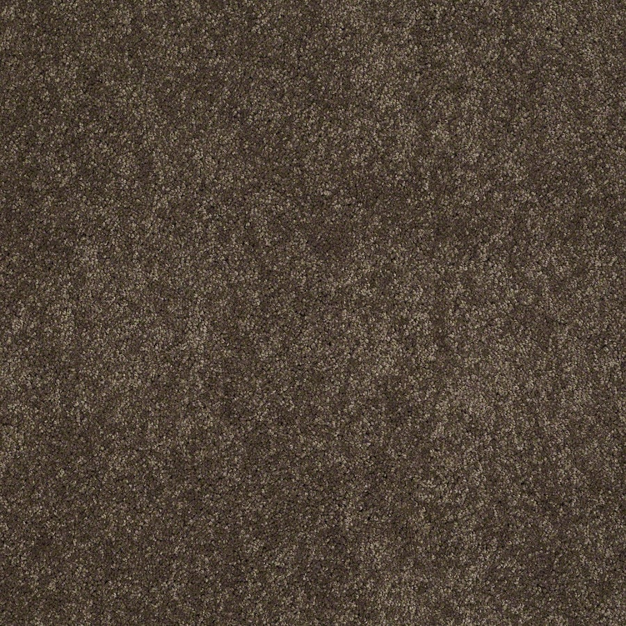 Shaw Supreme Delight 2 River Rock Rectangular Indoor Tufted Area Rug (Common: 6 x 9; Actual: 72-in W x 108-in L)