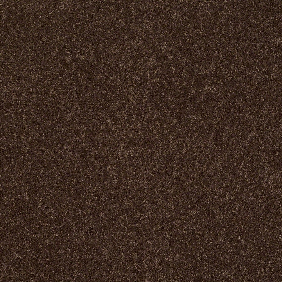 Shaw Supreme Delight 2 Decaf Rectangular Indoor Tufted Area Rug (Common: 6 x 9; Actual: 72-in W x 108-in L)