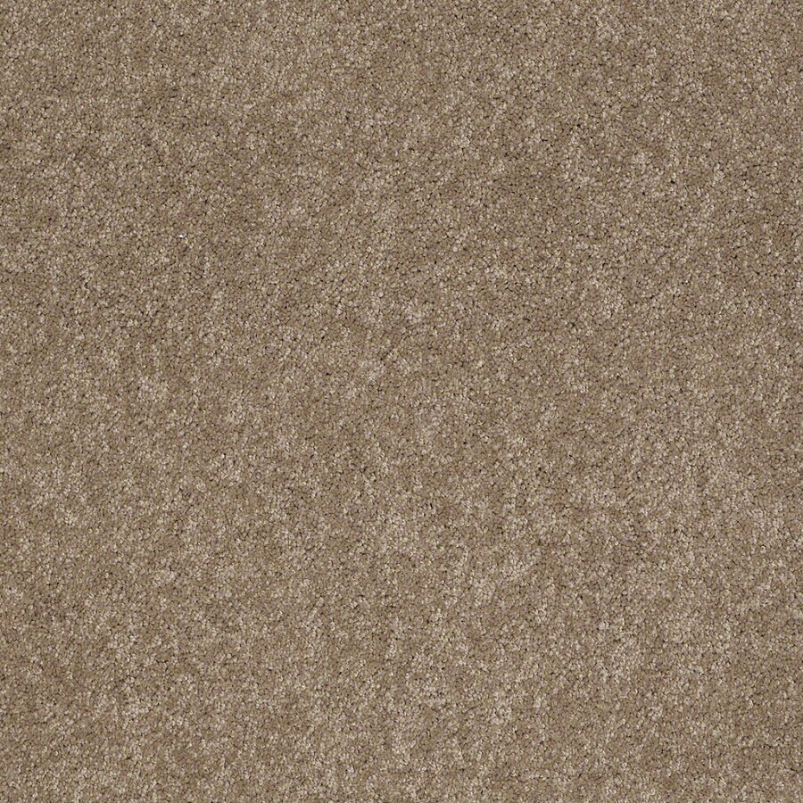 Shaw Supreme Delight 2 Hazelnut Rectangular Indoor Tufted Area Rug (Common: 6 x 9; Actual: 72-in W x 108-in L)