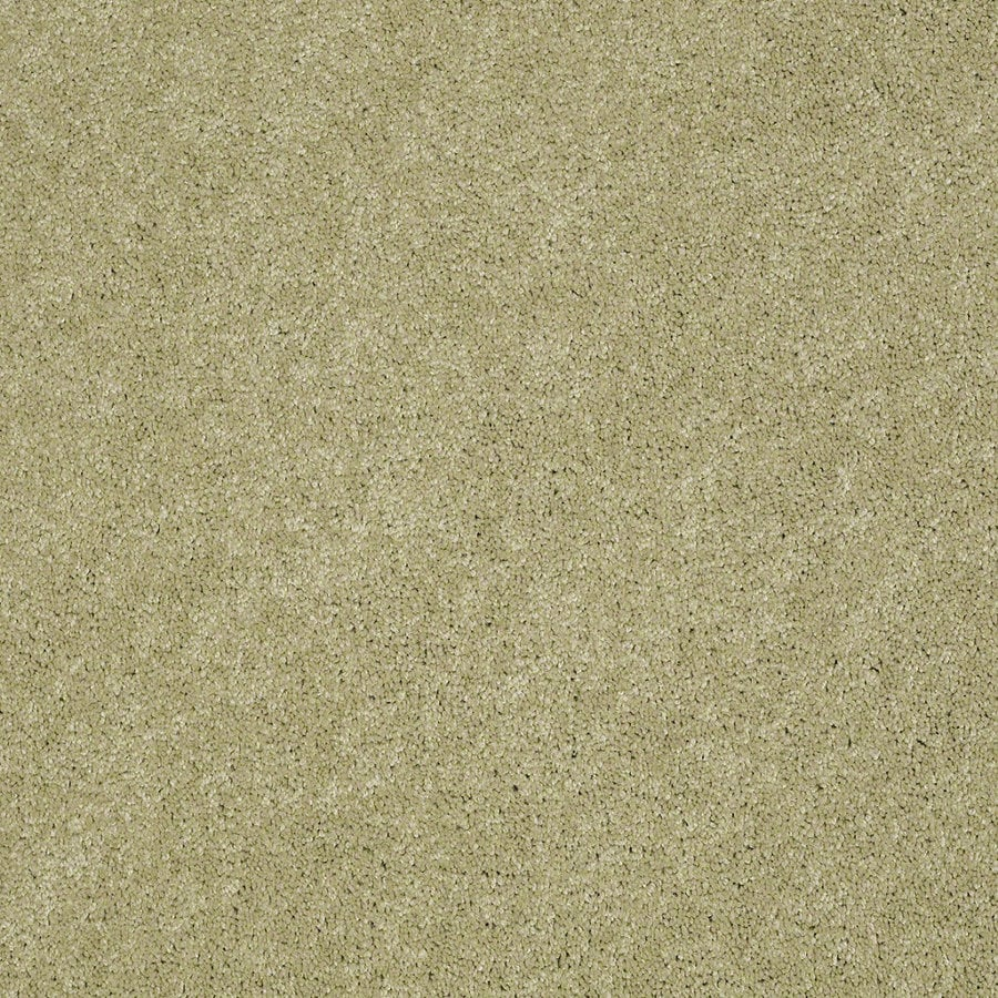 Shaw Supreme Delight 2 Sprout Rectangular Indoor Tufted Area Rug (Common: 8 x 11; Actual: 96-in W x 132-in L)