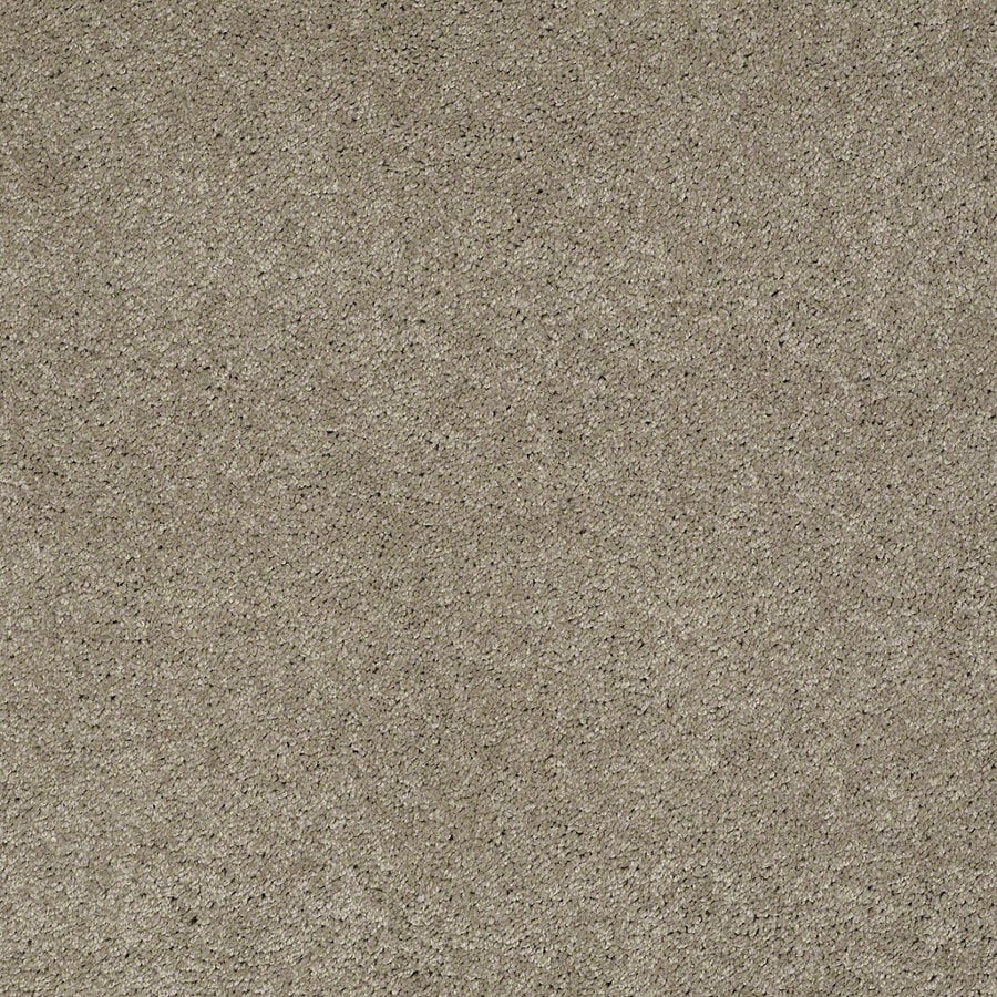 Shaw Supreme Delight 2 Driftwood Rectangular Indoor Tufted Area Rug (Common: 8 x 11; Actual: 96-in W x 132-in L)