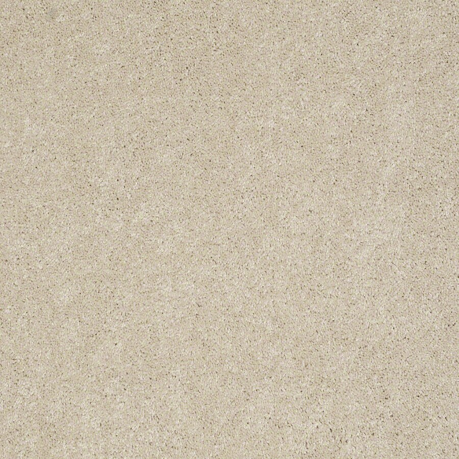 Shaw Supreme Delight 3 Cheesecake Rectangular Indoor Tufted Area Rug (Common: 8 x 11; Actual: 96-in W x 132-in L)