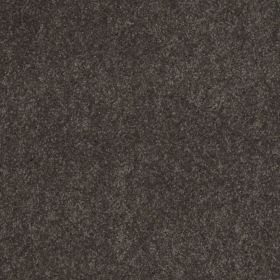 Shaw Supreme Delight 3 Nightfall Rectangular Indoor Tufted Area Rug (Common: 8 x 11; Actual: 96-in W x 132-in L)
