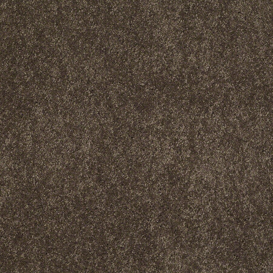 Shaw Supreme Delight 3 River Rock Rectangular Indoor Tufted Area Rug (Common: 8 x 11; Actual: 96-in W x 132-in L)