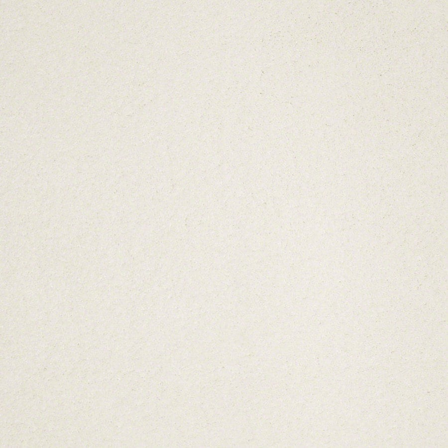 Shaw Supreme Delight 3 Sea Salt Rectangular Indoor Tufted Area Rug (Common: 6 x 9; Actual: 72-in W x 108-in L)