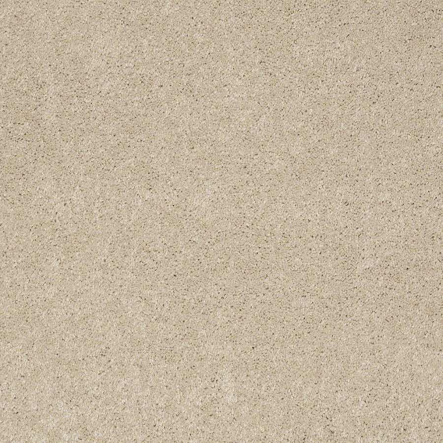 Shaw Supreme Delight 3 Pacific Pearl Rectangular Indoor Tufted Area Rug (Common: 6 x 9; Actual: 72-in W x 108-in L)