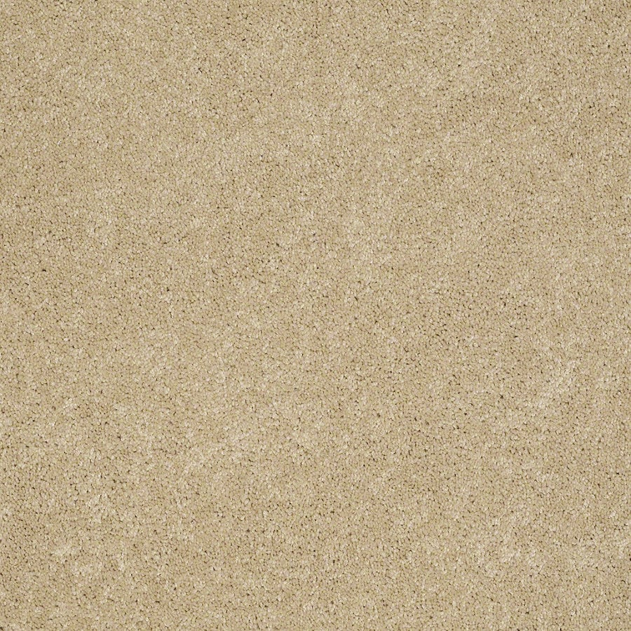 Shaw Supreme Delight 3 Twinkle Rectangular Indoor Tufted Area Rug (Common: 6 x 9; Actual: 72-in W x 108-in L)