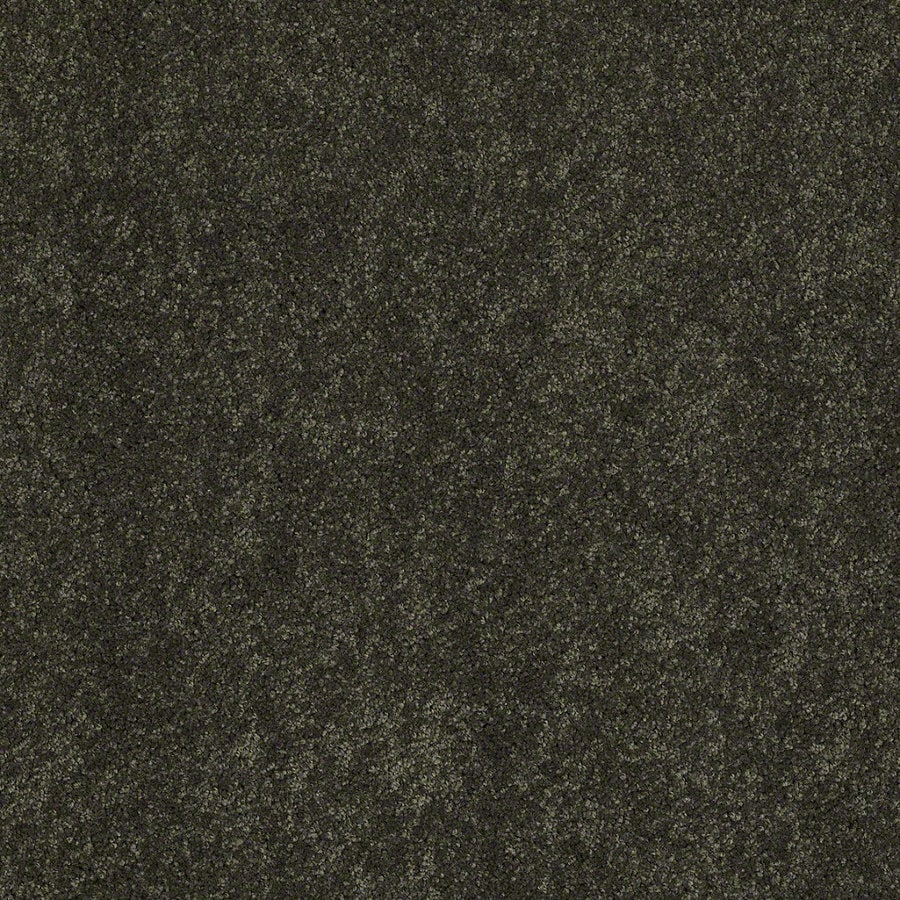 Shaw Supreme Delight 3 Parsley Rectangular Indoor Tufted Area Rug (Common: 6 x 9; Actual: 72-in W x 108-in L)