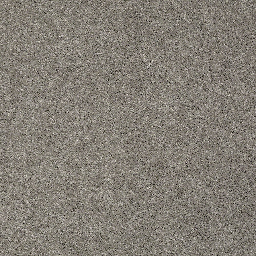 Shaw Supreme Delight 3 Heavy Metal Rectangular Indoor Tufted Area Rug (Common: 6 x 9; Actual: 72-in W x 108-in L)
