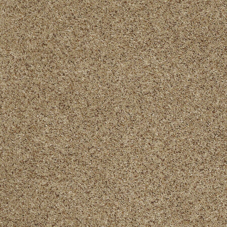 STAINMASTER TruSoft Classic II (T) Brownstone Textured Indoor Carpet