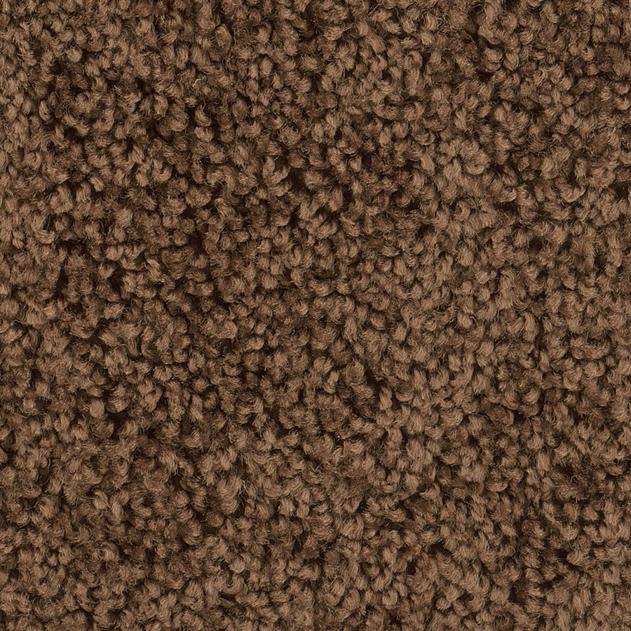 Shop Shaw Workhorse Walnut Textured Indoor Carpet At Lowes Com