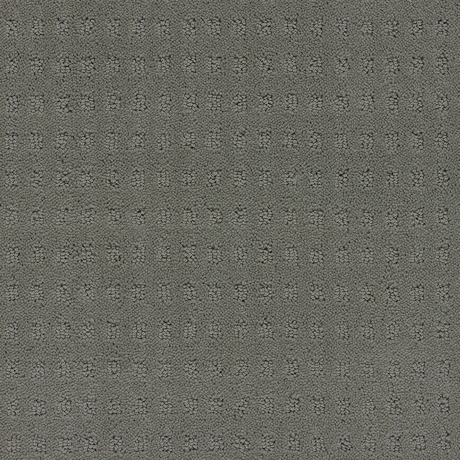 STAINMASTER TruSoft Glen Willow Charcoal Berber Indoor Carpet