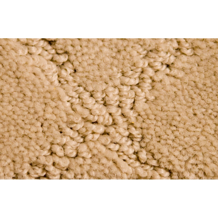 Royalty Carpet Mills Active Family Connections Gray Cut and Loop Indoor Carpet