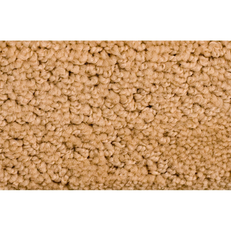 Royalty Carpet Mills Active Family Hightower Tan/Brown Cut and Loop Indoor Carpet