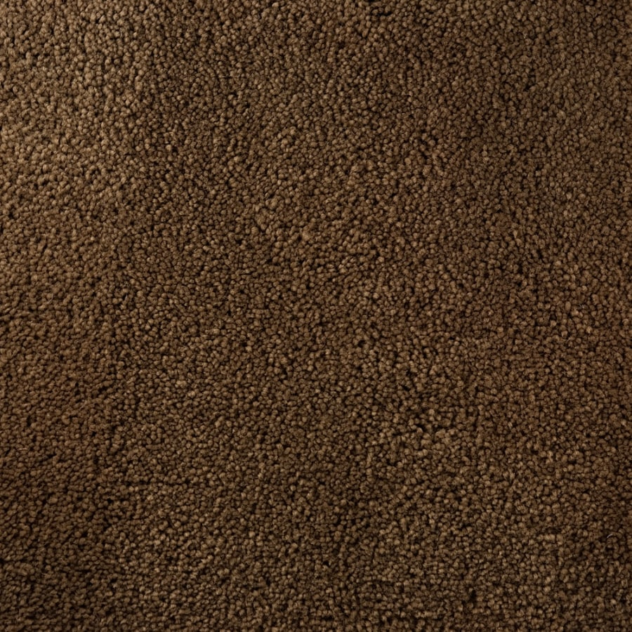 STAINMASTER Active Family Bellaire Bay Tan/Brown Saxony Indoor Carpet