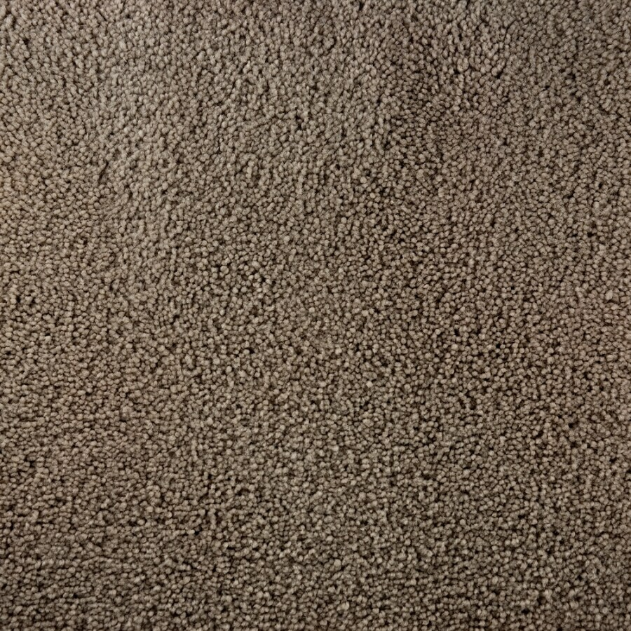 Shop stainmaster active family bellaire bay tan brown for Stainmaster carpet