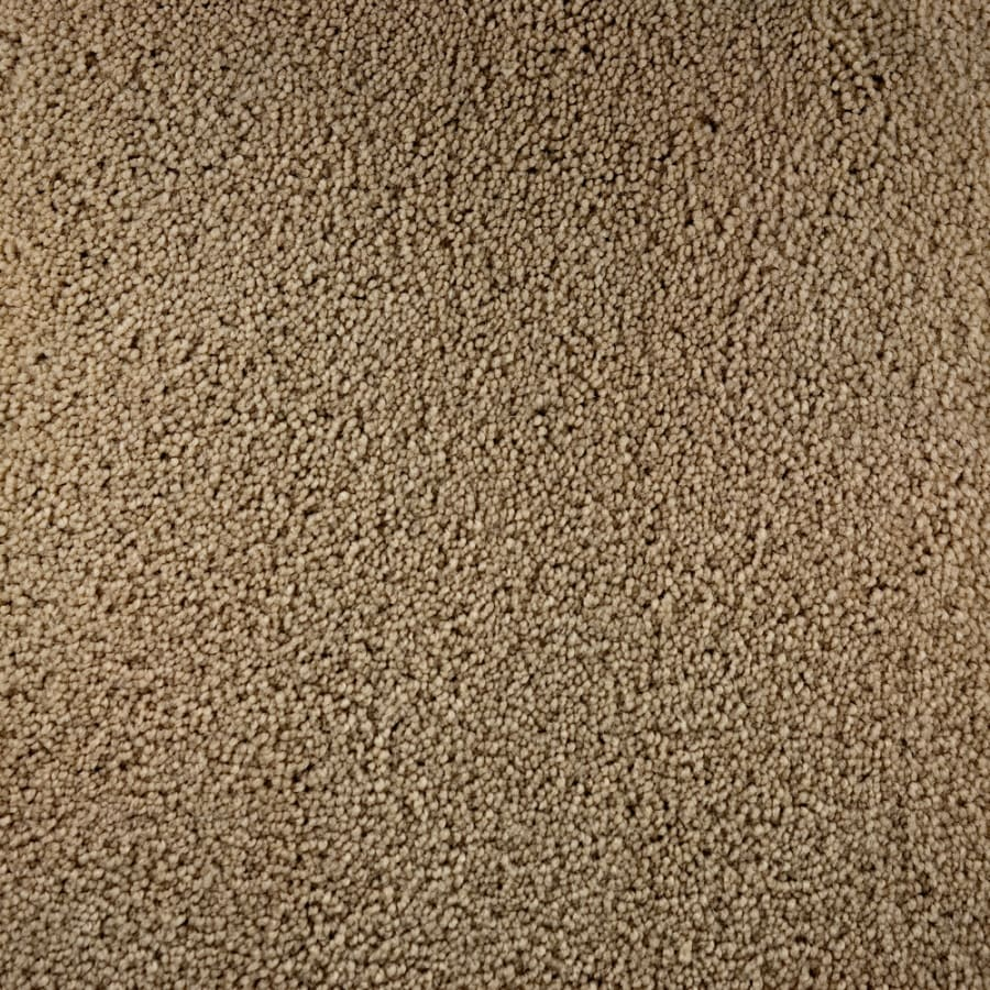 STAINMASTER Active Family Bellaire Bay Virtue Saxony Indoor Carpet