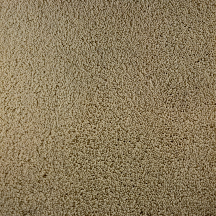 Shop stainmaster active family bellaire bay flourish for Stainmaster carpet