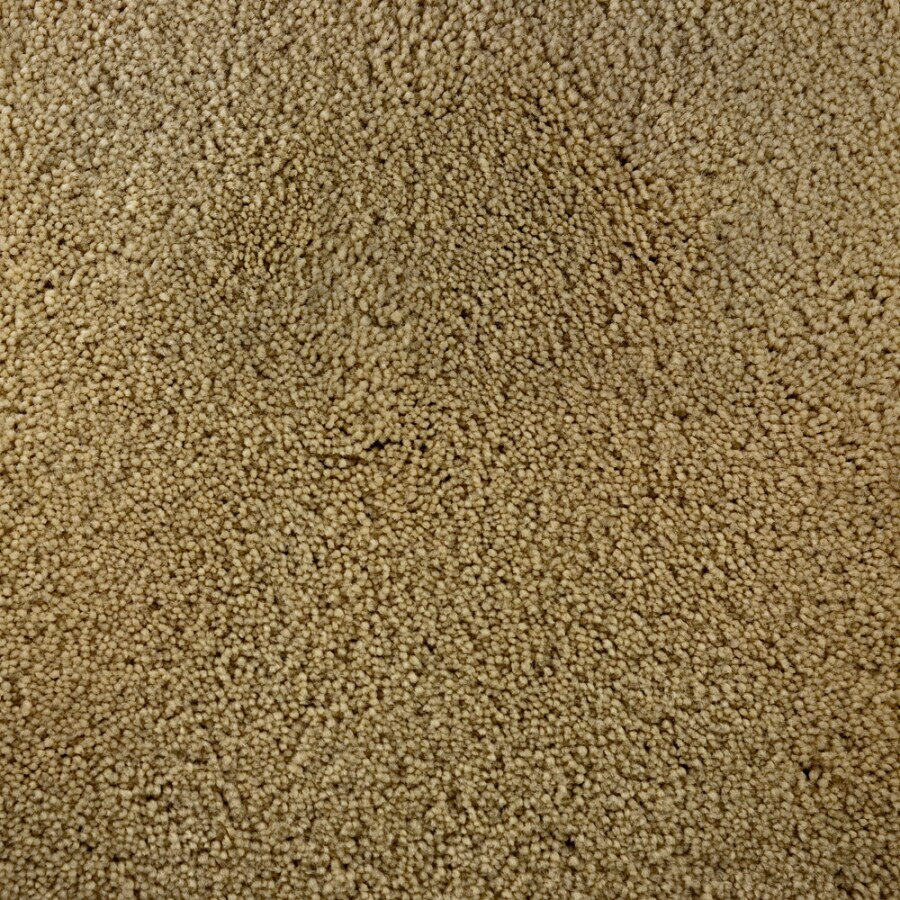 STAINMASTER Active Family Bellaire Bay Casino Saxony Indoor Carpet