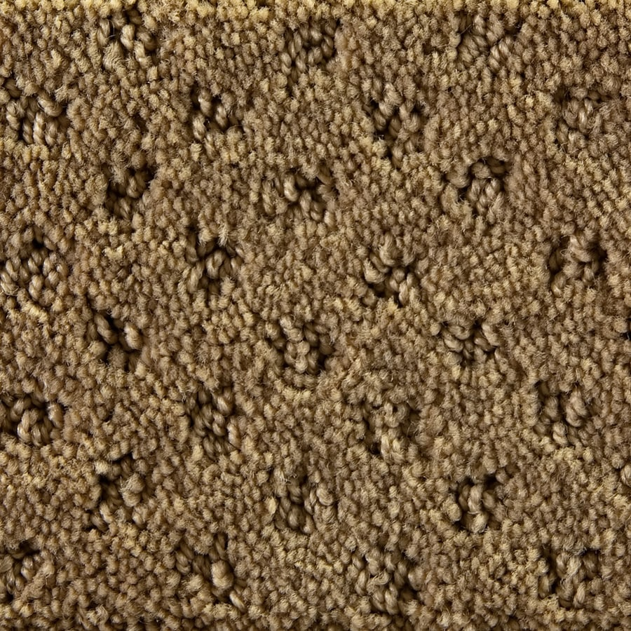 Royalty Carpet Mills Active Family Millenia After Time Pattern Indoor Carpet