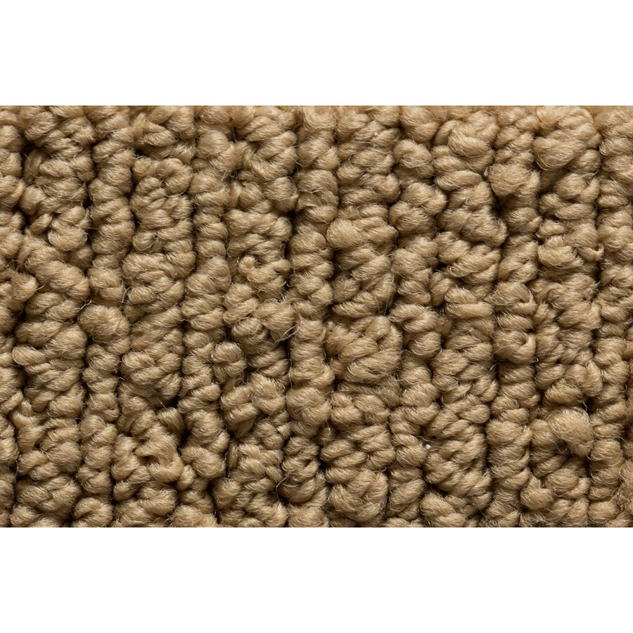 Royalty Carpet Mills Active Family Sojourn Signature Look Berber Indoor Carpet