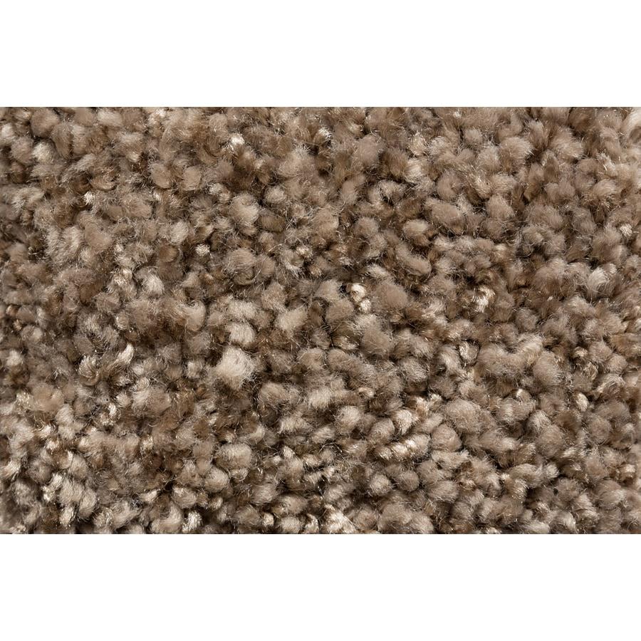 Royalty Carpet Mills TruSoft Footloose Style Cue Textured Indoor Carpet