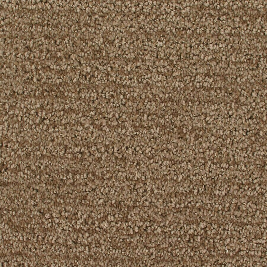 Royalty Carpet Mills Active Family Orion Colossal Pattern Indoor Carpet