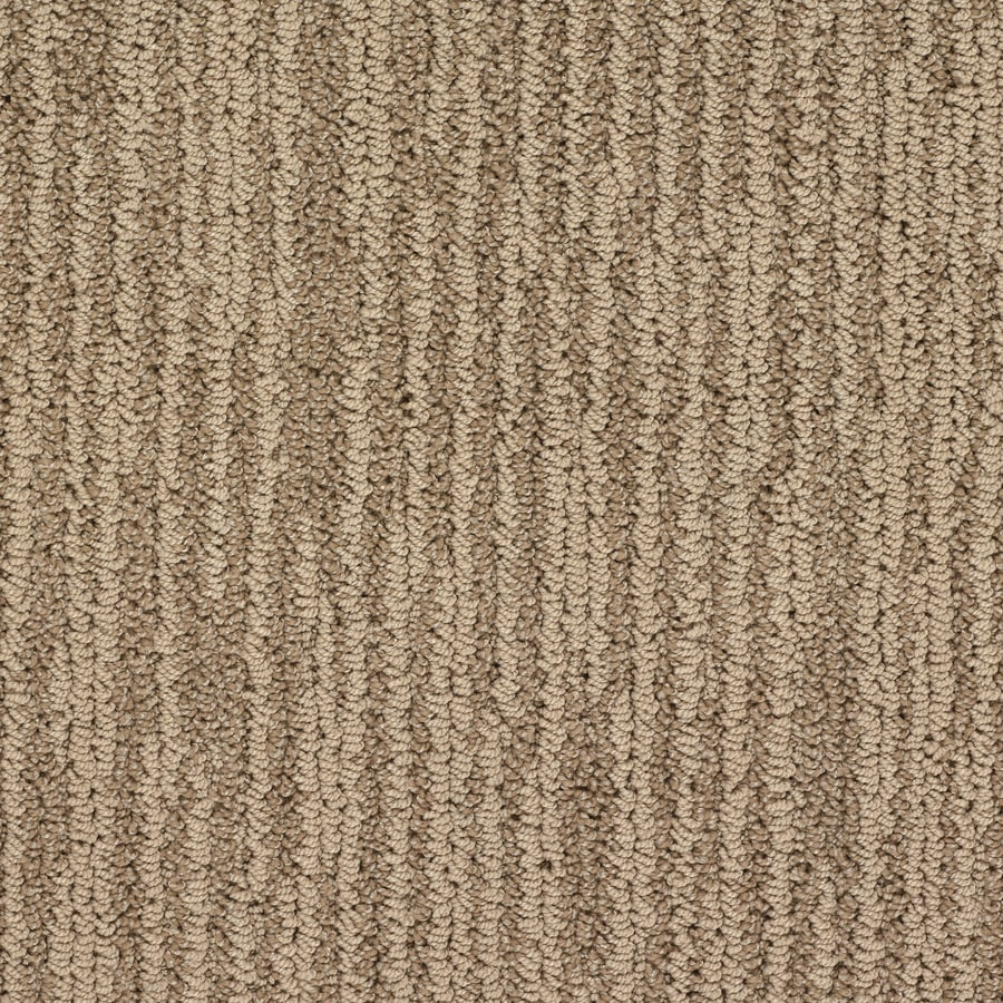 Shop stainmaster active family versailles berber indoor for Stainmaster carpet
