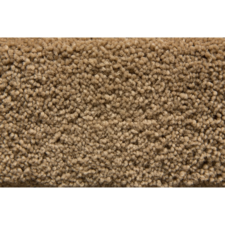 STAINMASTER Active Family Savoy Loam Saxony Indoor Carpet