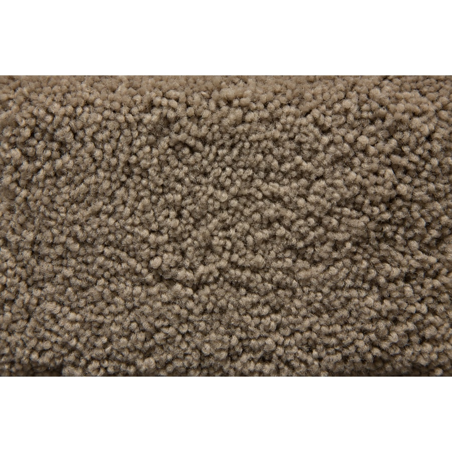 STAINMASTER Active Family Savoy Ash Saxony Indoor Carpet