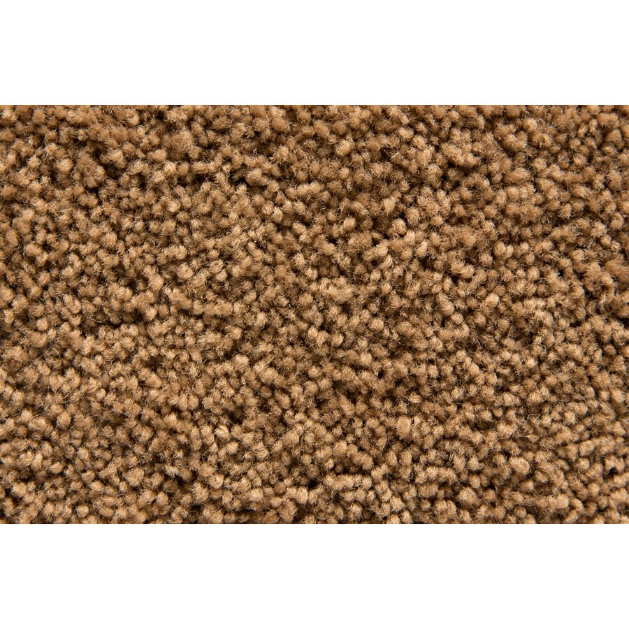 STAINMASTER Active Family Savoy Harvest Saxony Indoor Carpet