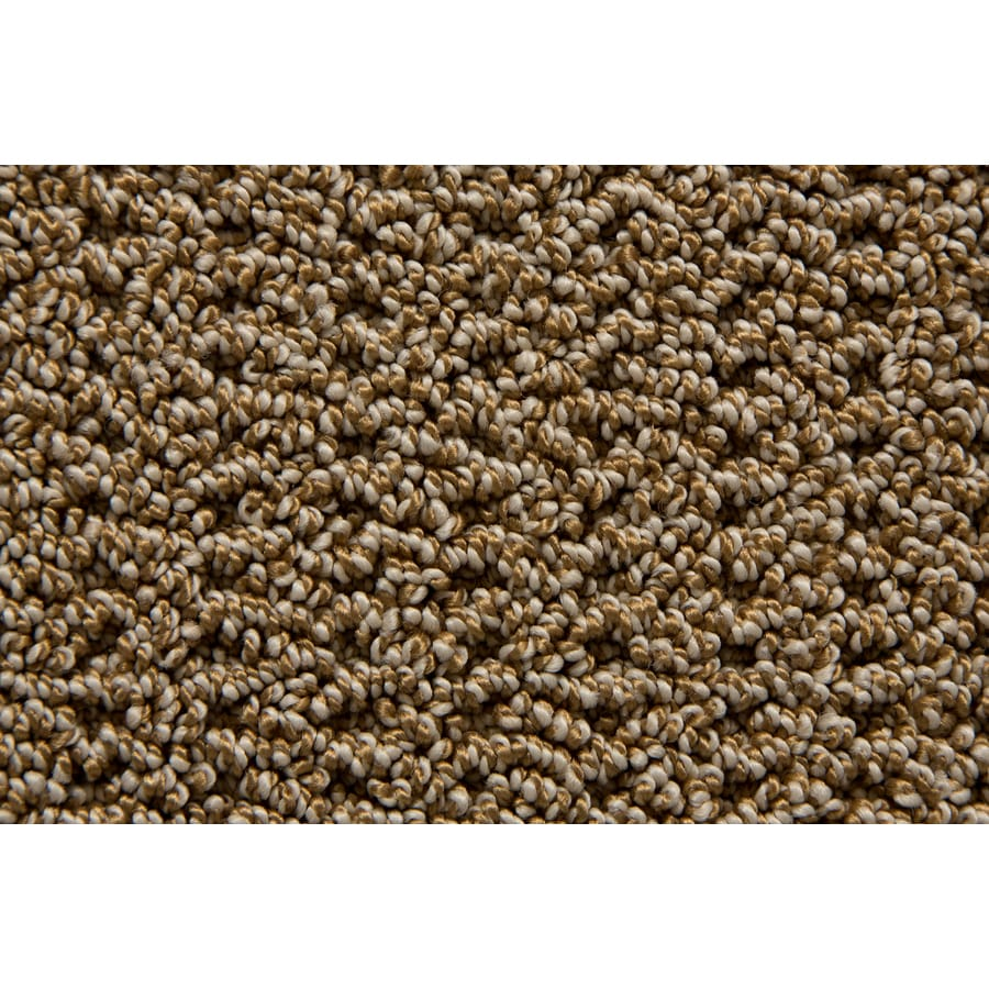 STAINMASTER TruSoft Compassion Vintage Pattern Indoor Carpet