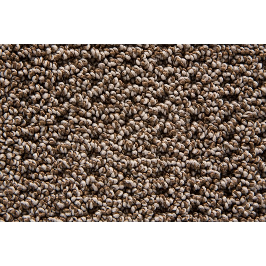 STAINMASTER TruSoft Compassion Pecan Pattern Indoor Carpet