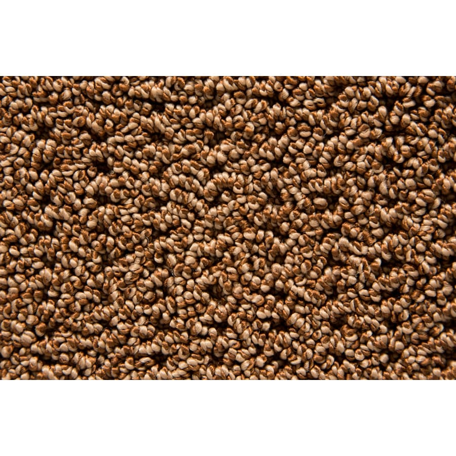 STAINMASTER TruSoft Compassion Patina Pattern Indoor Carpet