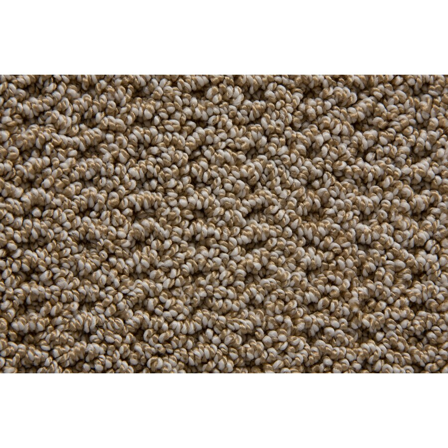 STAINMASTER TruSoft Merriment Palmetto Pattern Indoor Carpet