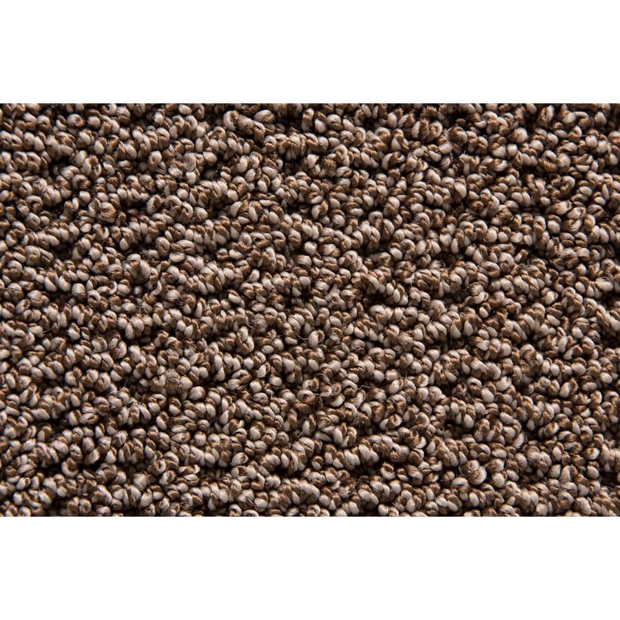 STAINMASTER TruSoft Merriment Burrow Pattern Indoor Carpet