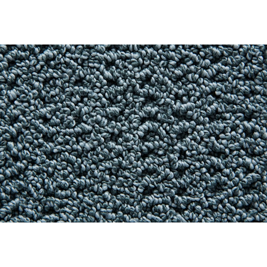 STAINMASTER TruSoft Merriment Tropical Pattern Indoor Carpet