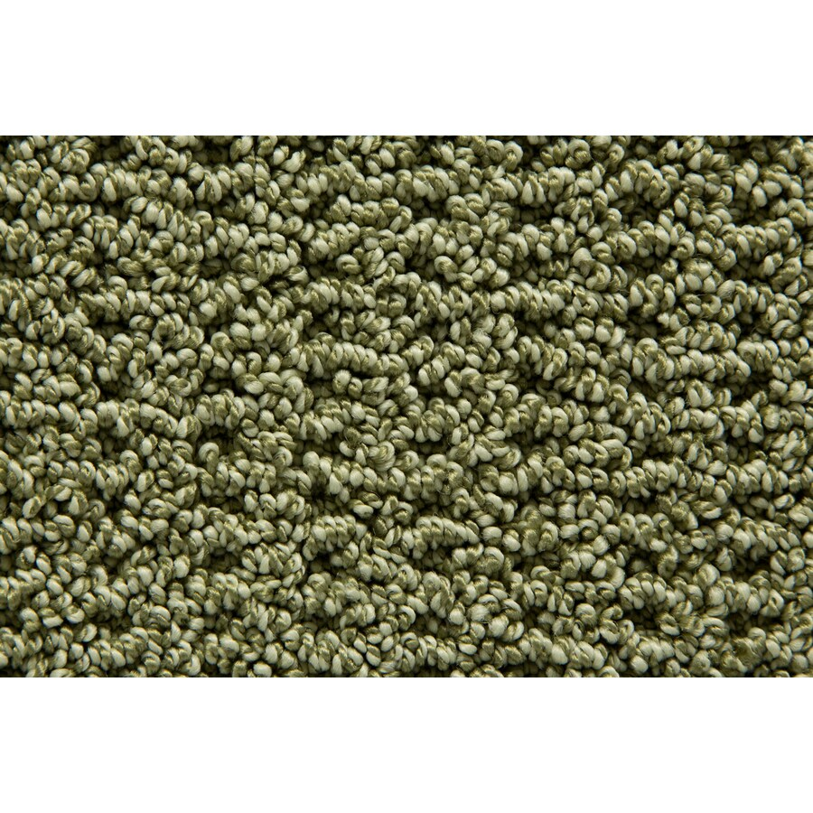 STAINMASTER TruSoft Merriment Reef Pattern Indoor Carpet