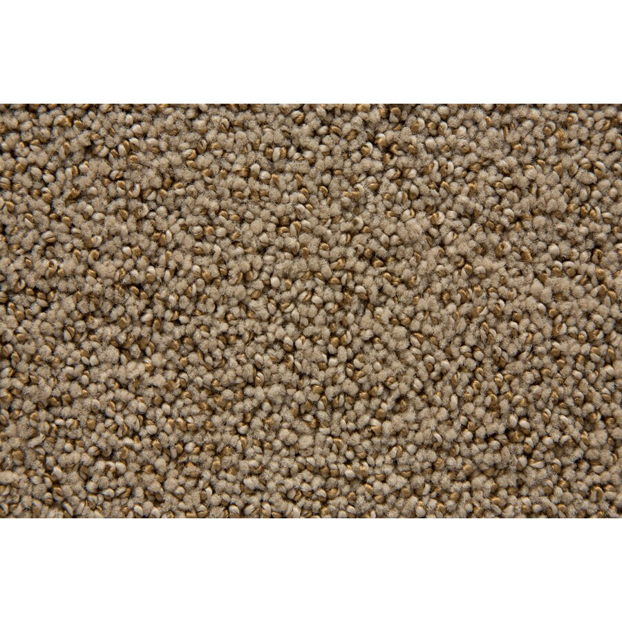 STAINMASTER TruSoft Mysterious Portabello Pattern Indoor Carpet