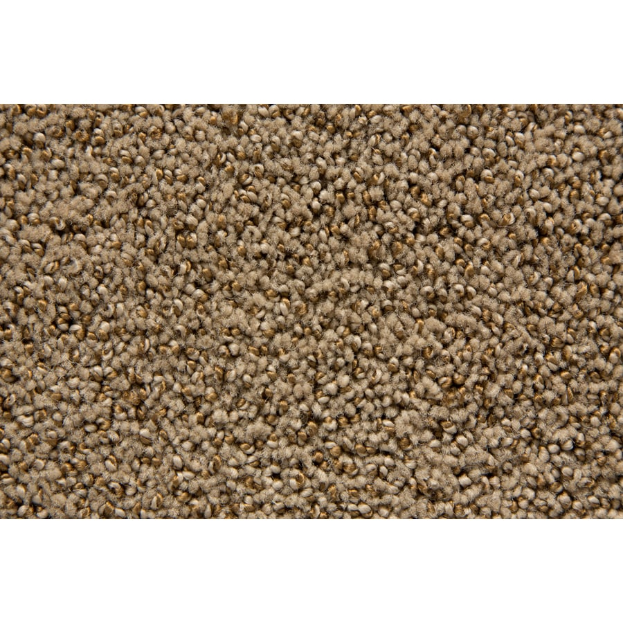 STAINMASTER TruSoft Mysterious Pyramid Pattern Indoor Carpet